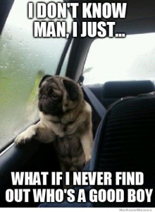 what-if-i-never-find-out-whos-a-good-boy-pug